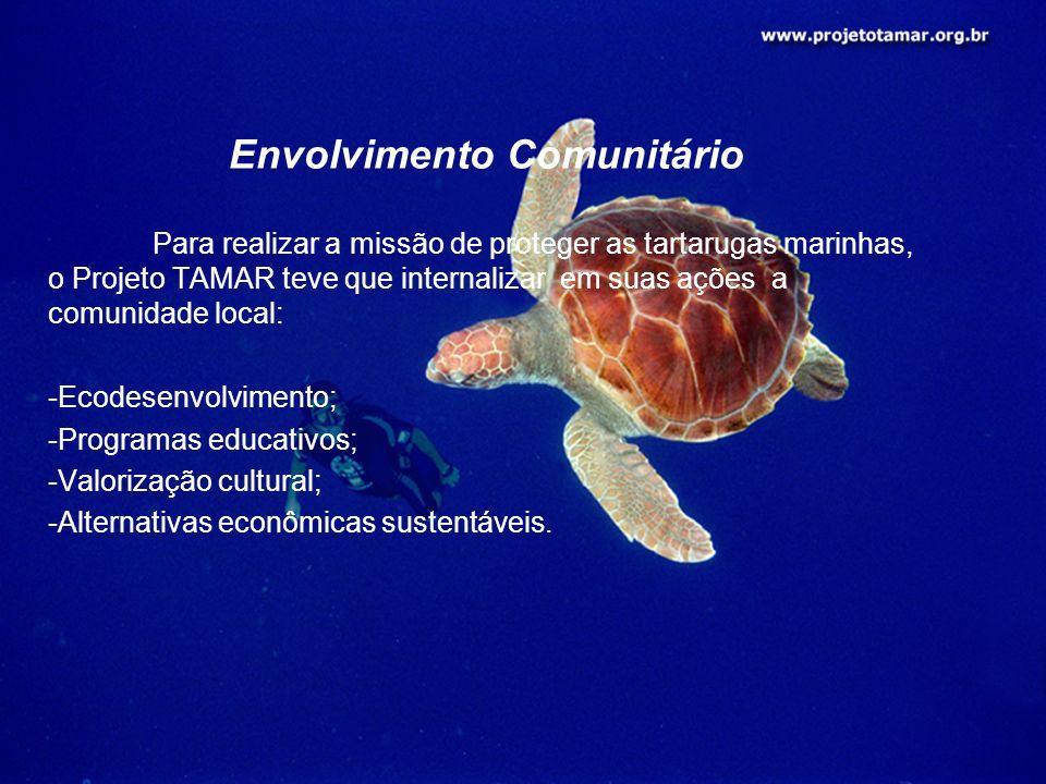 Envolvimento Comunitário Para realizar a missão de proteger as tartarugas marinhas, o Projeto TAMAR teve que internalizar em suas ações a comunidade l