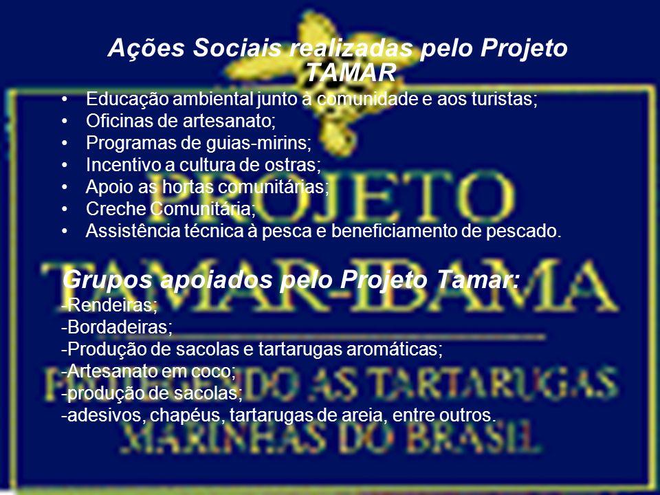 Bases de Sustentação do Projeto TAMAR O Projeto é sustentado principalmente por recursos provenientes de um tripé formado pelo IBAMA/ MMA, PETROBRAS e a venda de serviços de produtos com a marca TAMAR.