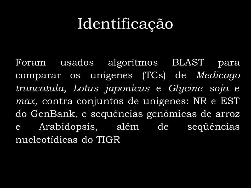 Identificação Foram usados algoritmos BLAST para comparar os unigenes (TCs) de Medicago truncatula, Lotus japonicus e Glycine soja e max, contra conju