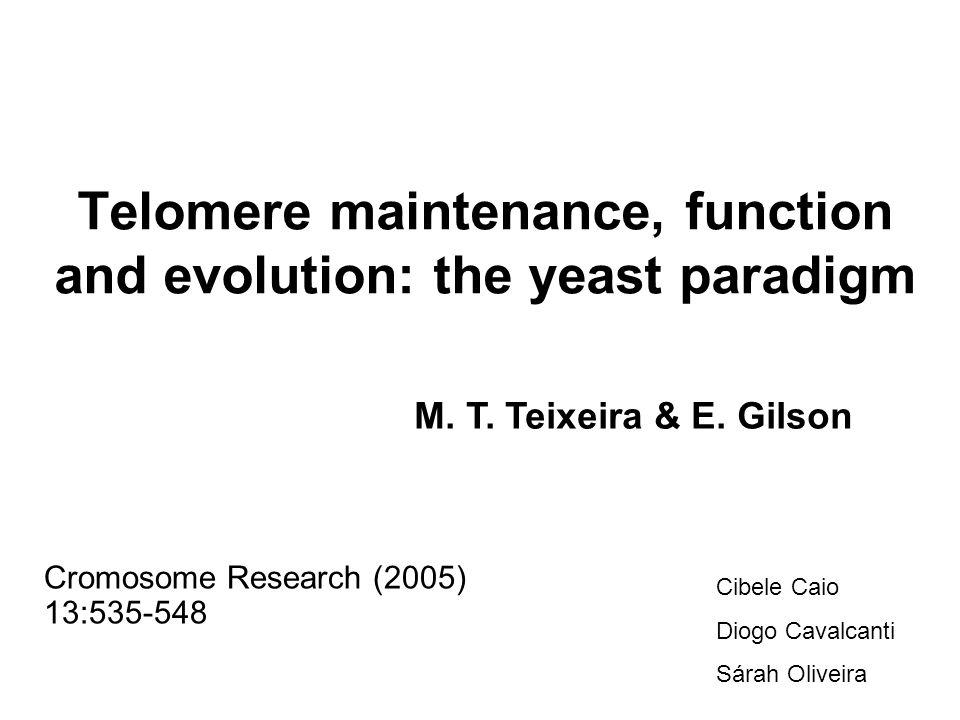 Biologia dos telômeros de Saccharomyces cerevisiae Rap1: –Transcrição (sítios não teloméricos) –Fusão –Comprimento (Rif1 e Rif2) –TPE: Sir