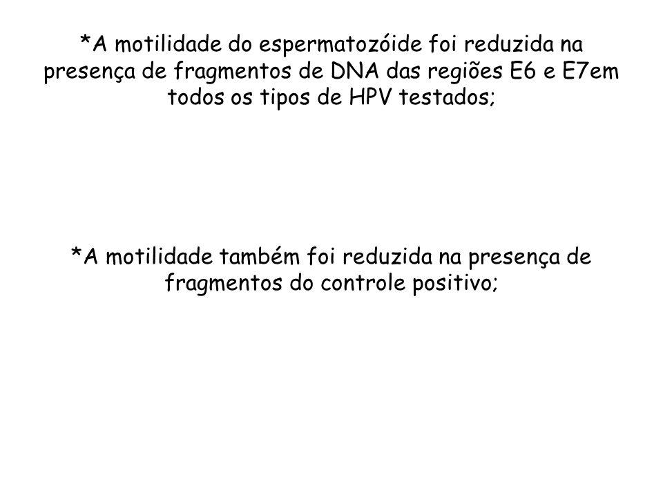 *A motilidade do espermatozóide foi reduzida na presença de fragmentos de DNA das regiões E6 e E7em todos os tipos de HPV testados; *A motilidade tamb