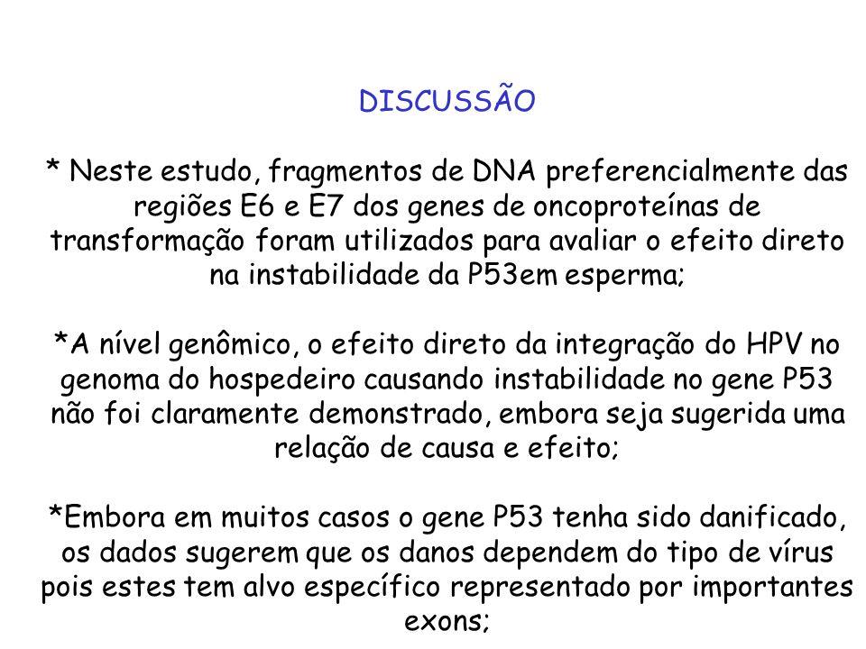 DISCUSSÃO * Neste estudo, fragmentos de DNA preferencialmente das regiões E6 e E7 dos genes de oncoproteínas de transformação foram utilizados para av