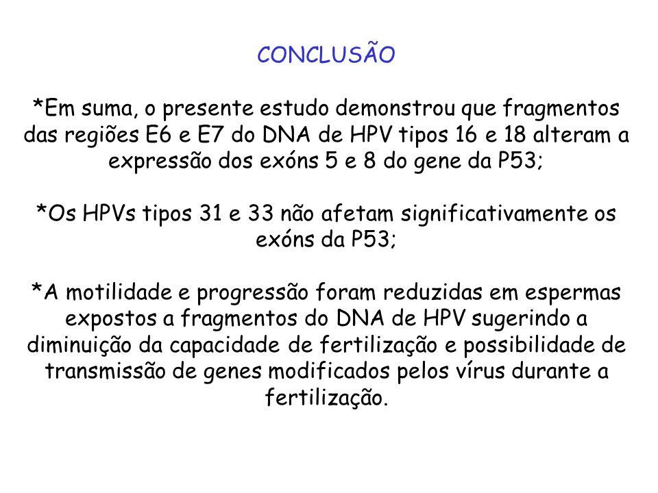 CONCLUSÃO *Em suma, o presente estudo demonstrou que fragmentos das regiões E6 e E7 do DNA de HPV tipos 16 e 18 alteram a expressão dos exóns 5 e 8 do
