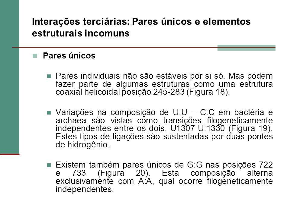 Interações terciárias: Pares únicos e elementos estruturais incomuns Pares únicos Pares individuais não são estáveis por si só. Mas podem fazer parte