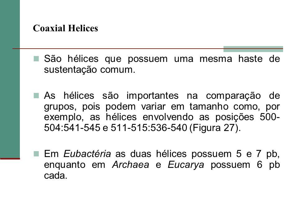 Coaxial Helices São hélices que possuem uma mesma haste de sustentação comum. As hélices são importantes na comparação de grupos, pois podem variar em