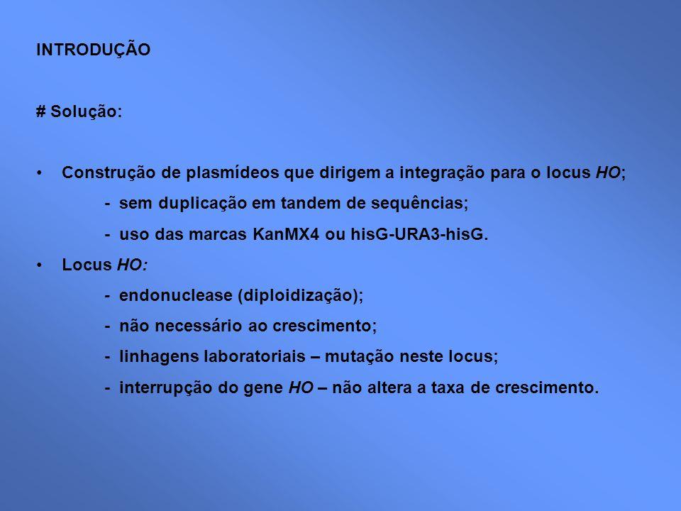 INTRODUÇÃO # Solução: Construção de plasmídeos que dirigem a integração para o locus HO; - sem duplicação em tandem de sequências; - uso das marcas Ka