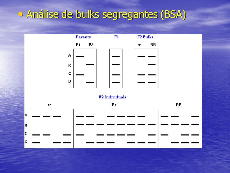 Análise de bulks segregantes (BSA) Análise de bulks segregantes (BSA)