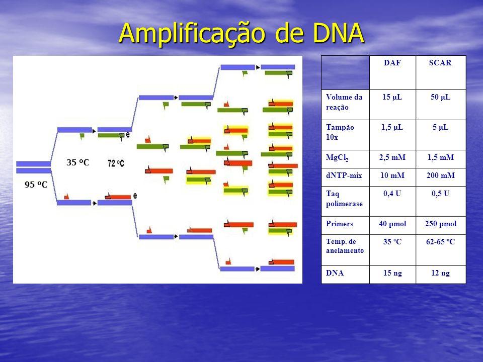 Amplificação de DNA 35 ºC 95 ºC DAFSCAR Volume da reação 15 µL50 µL Tampão 10x 1,5 µL5 µL MgCl 2 2,5 mM1,5 mM dNTP-mix10 mM200 mM Taq polimerase 0,4 U
