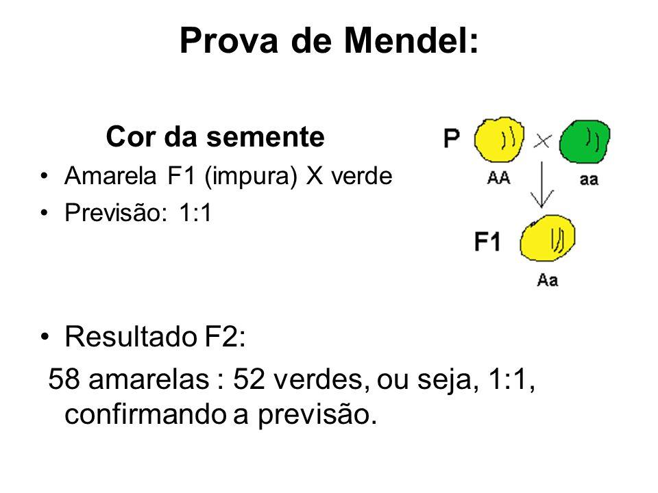 Prova de Mendel: Cor da semente Amarela F1 (impura) X verde Previsão: 1:1 Resultado F2: 58 amarelas : 52 verdes, ou seja, 1:1, confirmando a previsão.