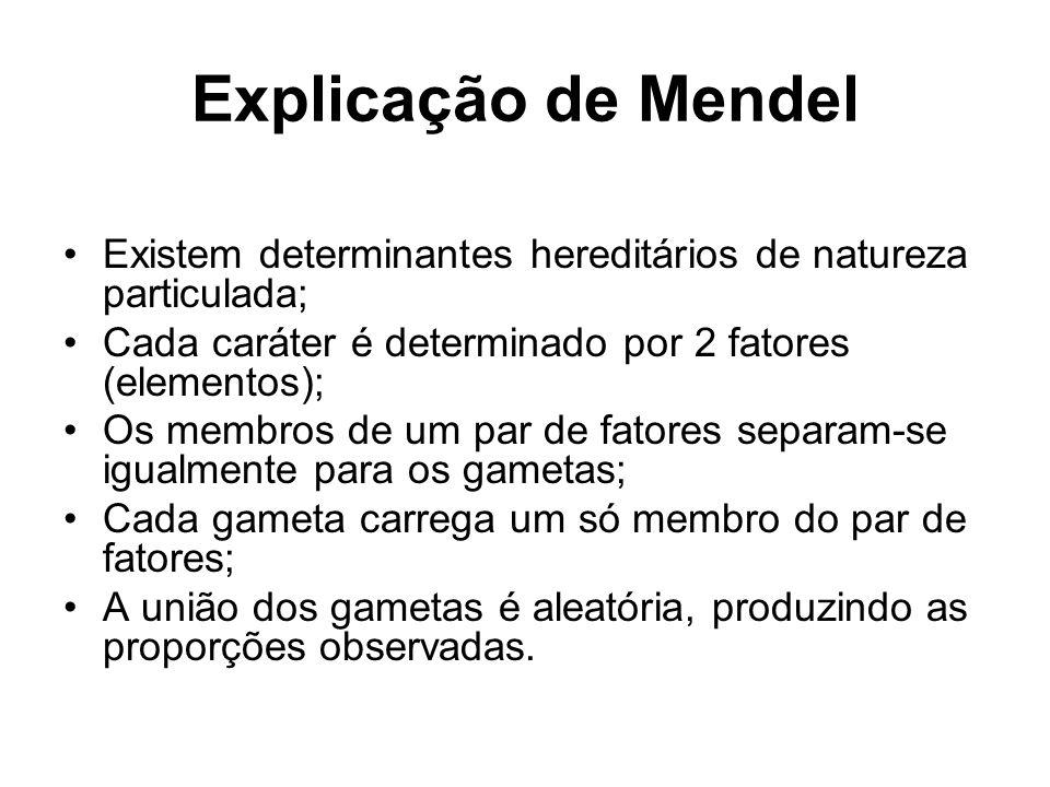 Explicação de Mendel Existem determinantes hereditários de natureza particulada; Cada caráter é determinado por 2 fatores (elementos); Os membros de u