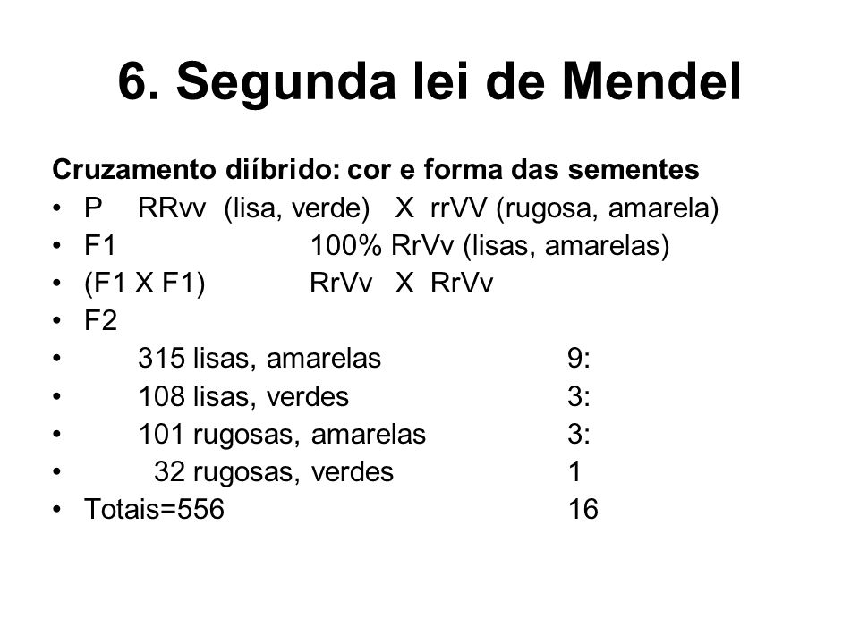 6. Segunda lei de Mendel Cruzamento diíbrido: cor e forma das sementes PRRvv(lisa, verde)X rrVV (rugosa, amarela) F1100% RrVv (lisas, amarelas) (F1 X