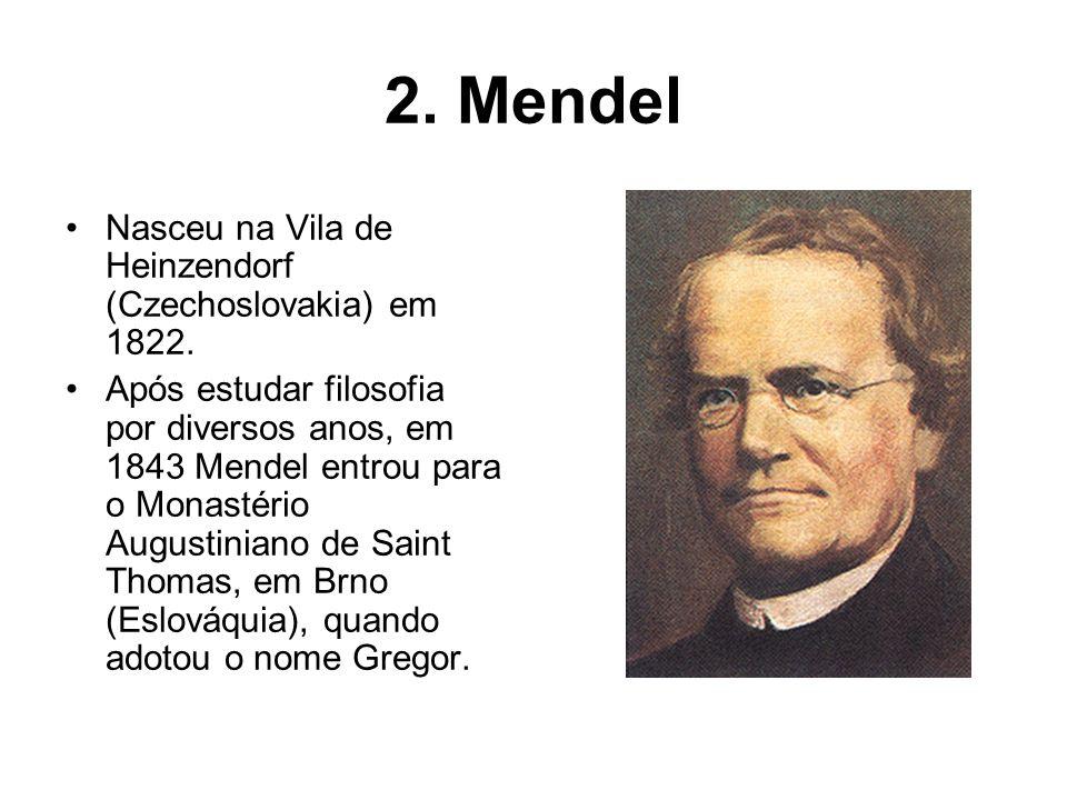 2. Mendel Nasceu na Vila de Heinzendorf (Czechoslovakia) em 1822. Após estudar filosofia por diversos anos, em 1843 Mendel entrou para o Monastério Au