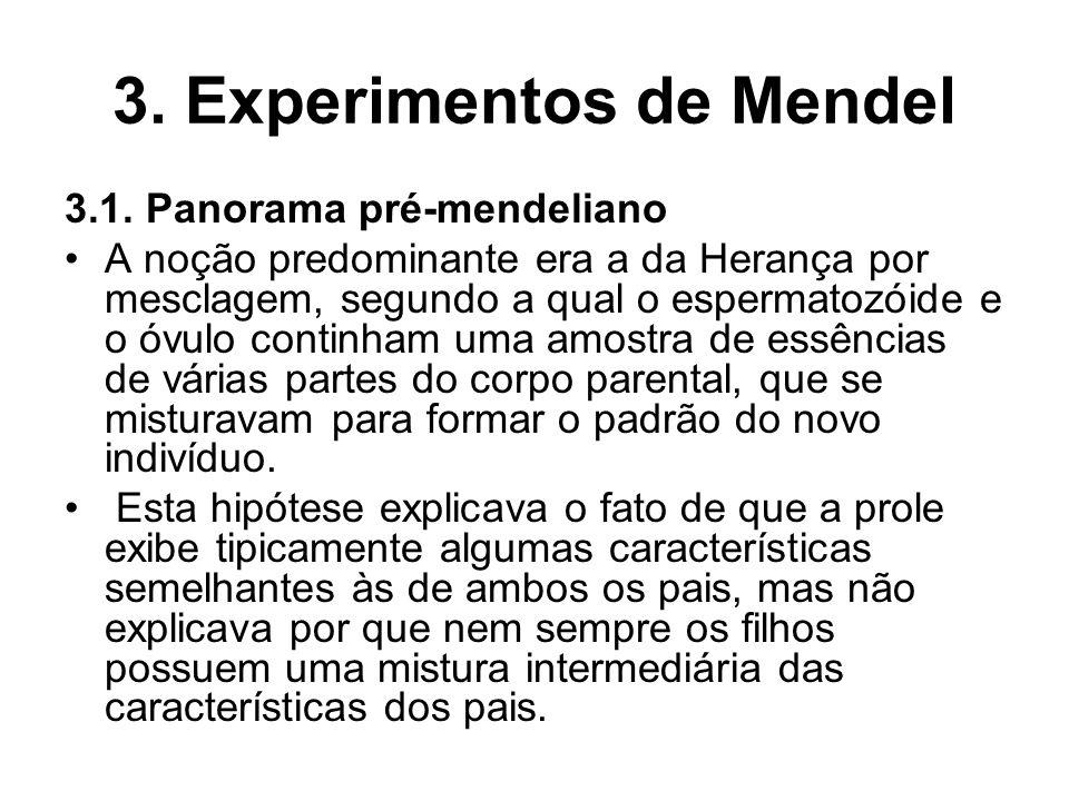3. Experimentos de Mendel 3.1. Panorama pré-mendeliano A noção predominante era a da Herança por mesclagem, segundo a qual o espermatozóide e o óvulo