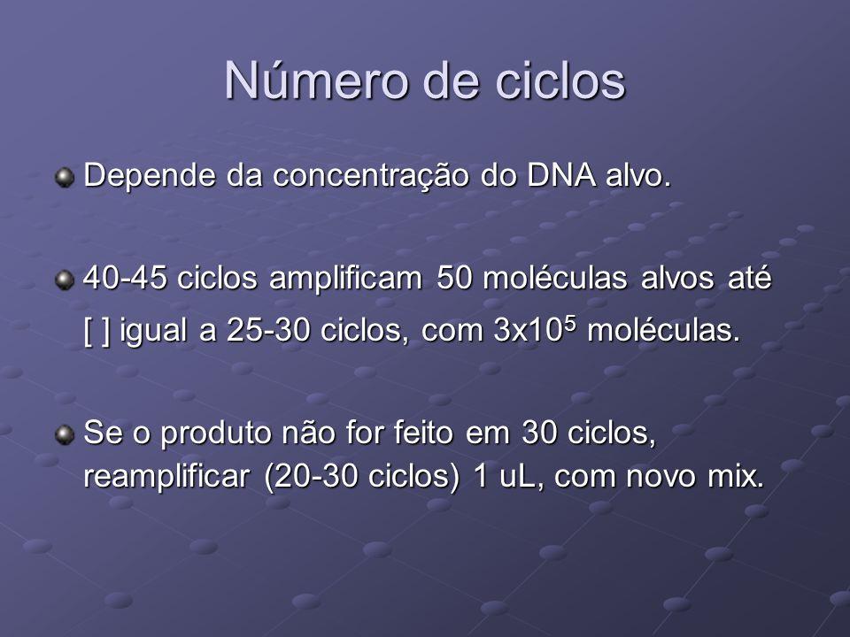 Número de ciclos Depende da concentração do DNA alvo. 40-45 ciclos amplificam 50 moléculas alvos até [ ] igual a 25-30 ciclos, com 3x10 5 moléculas. S