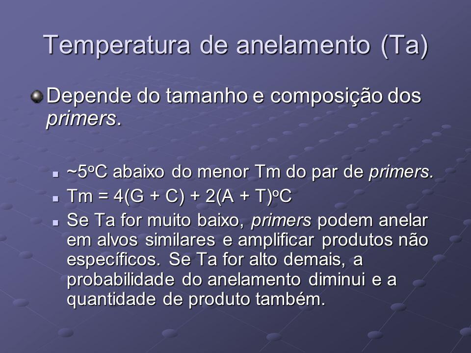 Temperatura de anelamento (Ta) Depende do tamanho e composição dos primers. ~5 o C abaixo do menor Tm do par de primers. ~5 o C abaixo do menor Tm do