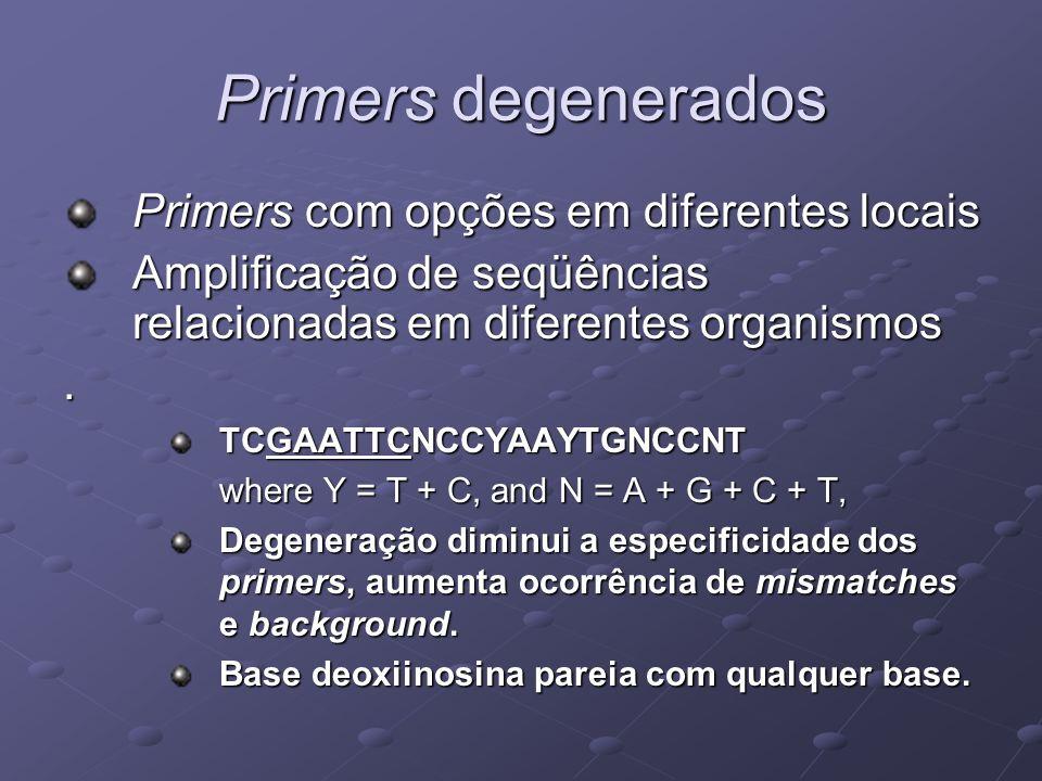 Primers degenerados Primers com opções em diferentes locais Amplificação de seqüências relacionadas em diferentes organismos. TCGAATTCNCCYAAYTGNCCNT w