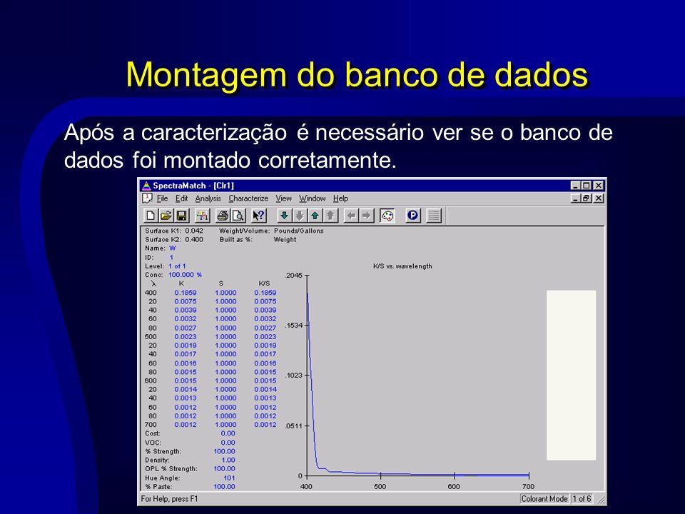 Montagem do banco de dados Após a caracterização é necessário ver se o banco de dados foi montado corretamente.