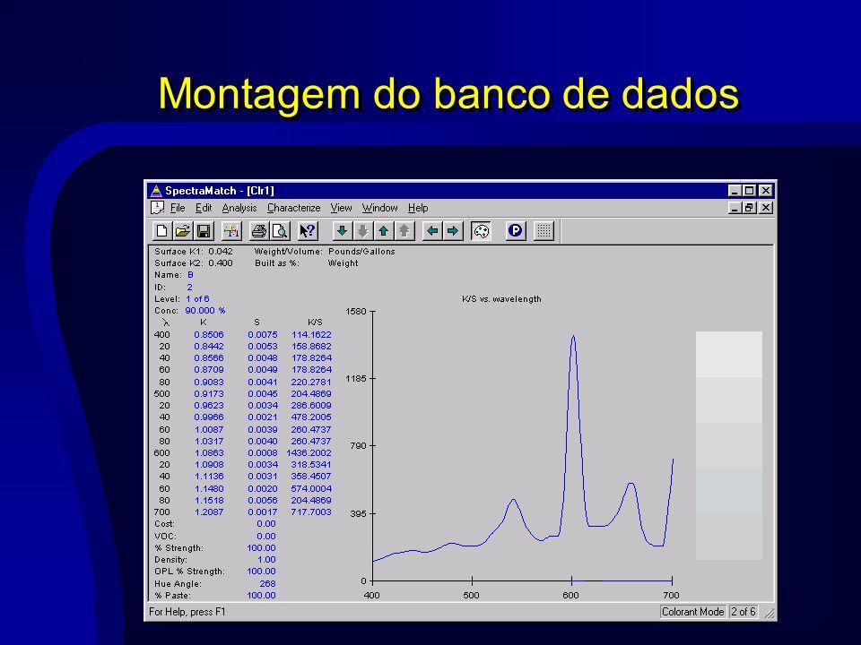 Montagem do banco de dados