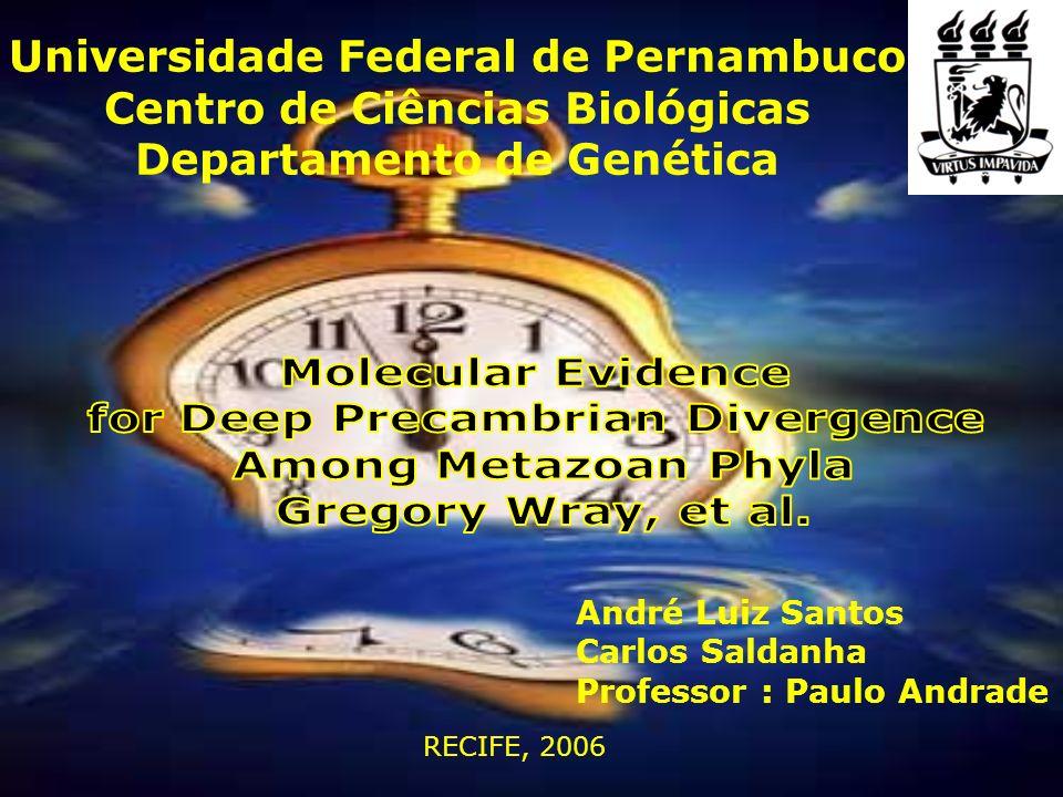 RECIFE, 2006 Universidade Federal de Pernambuco Centro de Ciências Biológicas Departamento de Genética André Luiz Santos Carlos Saldanha Professor : P