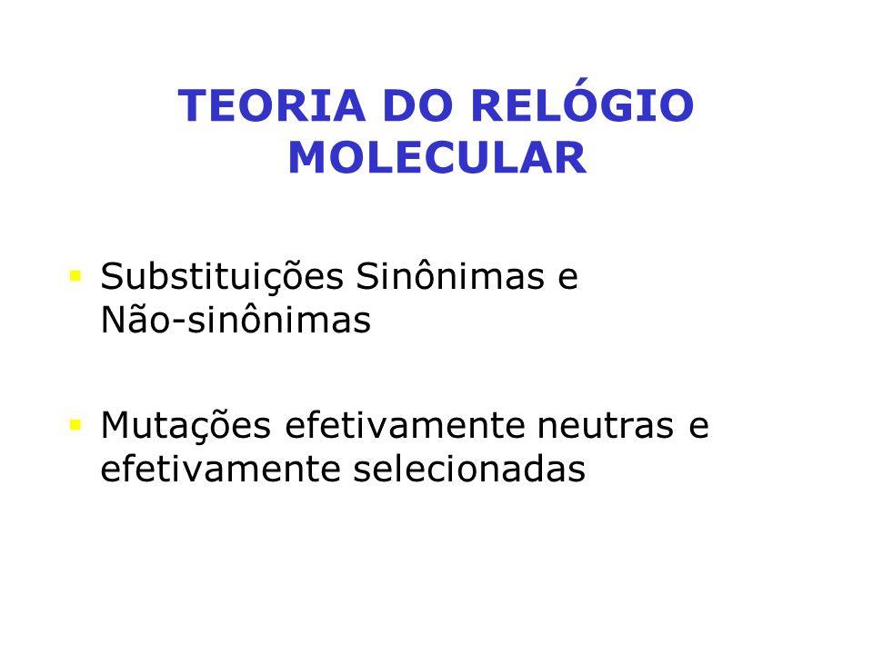Substituições Sinônimas e Não-sinônimas Mutações efetivamente neutras e efetivamente selecionadas TEORIA DO RELÓGIO MOLECULAR