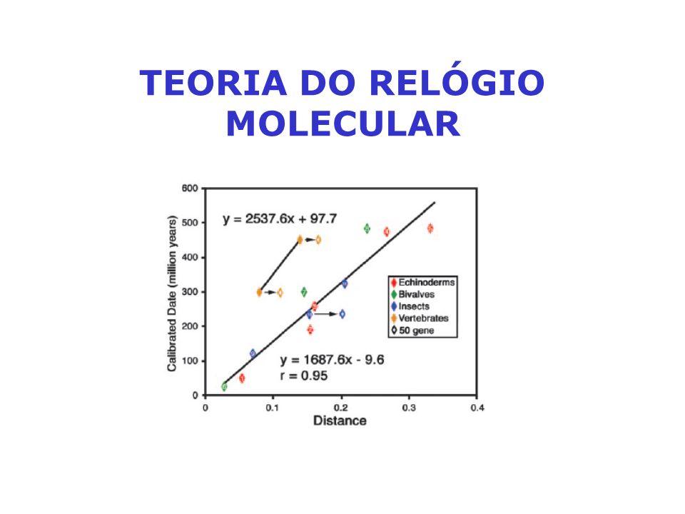 TEORIA DO RELÓGIO MOLECULAR