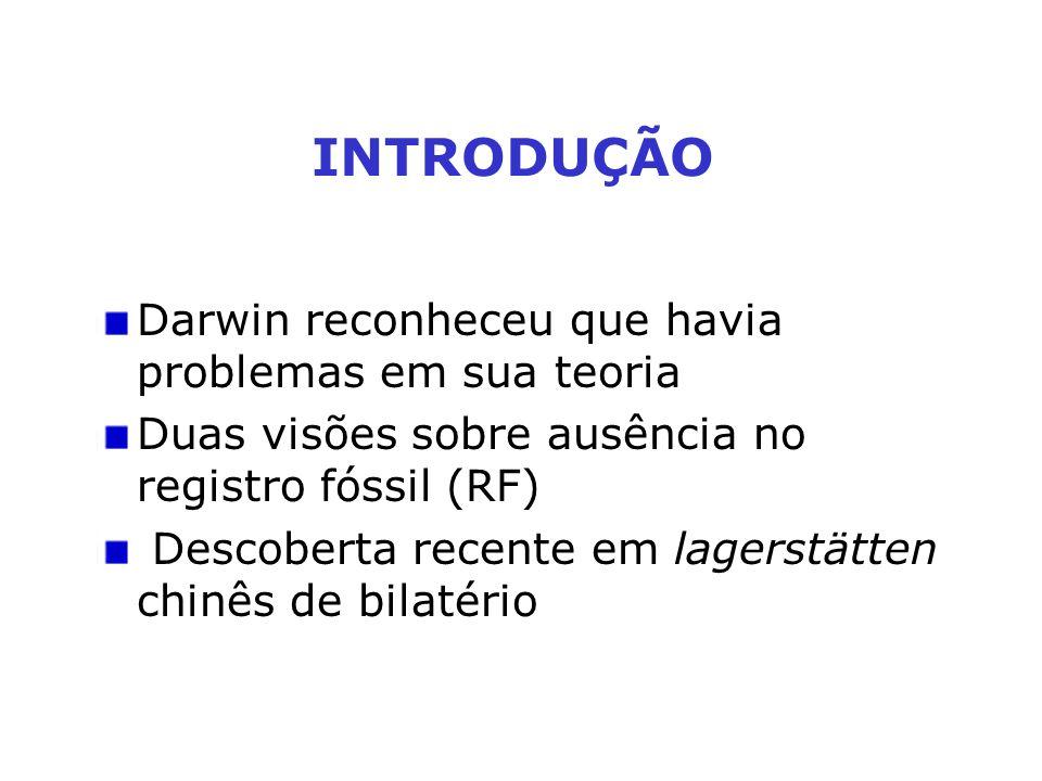 Darwin reconheceu que havia problemas em sua teoria Duas visões sobre ausência no registro fóssil (RF) Descoberta recente em lagerstätten chinês de bi