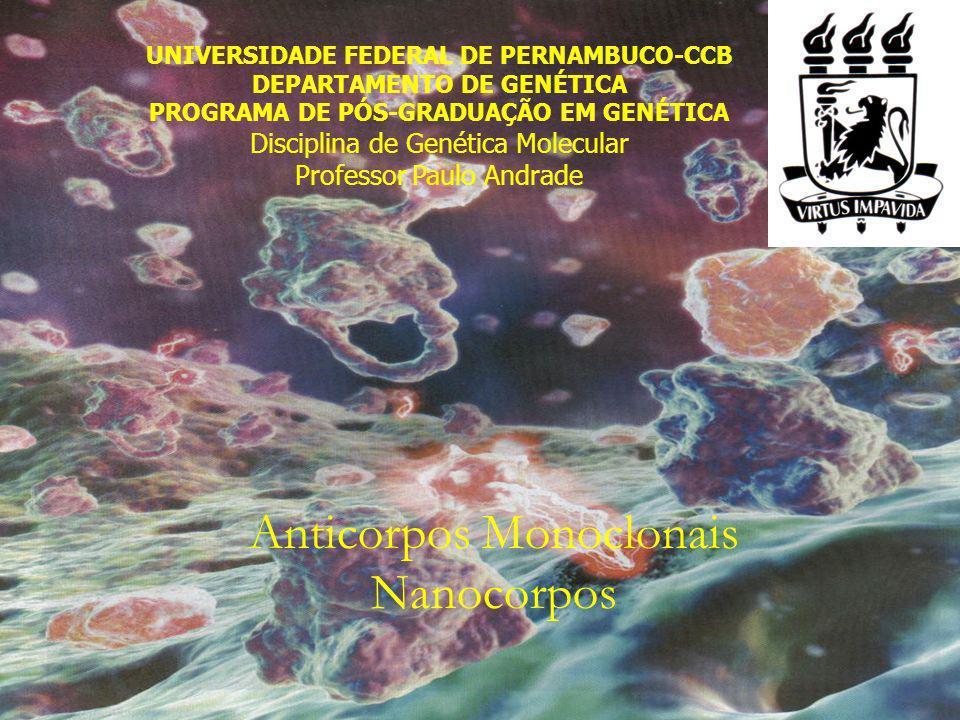 Anticorpos Monoclonais Nanocorpos UNIVERSIDADE FEDERAL DE PERNAMBUCO-CCB DEPARTAMENTO DE GENÉTICA PROGRAMA DE PÓS-GRADUAÇÃO EM GENÉTICA Disciplina de