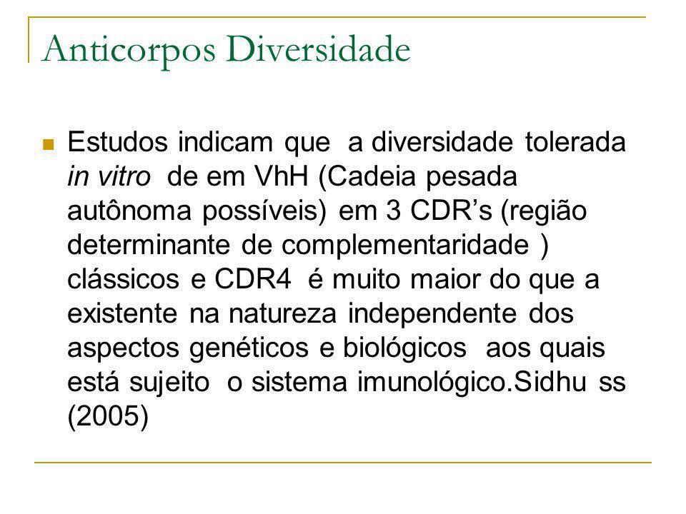 Anticorpos Diversidade Estudos indicam que a diversidade tolerada in vitro de em VhH (Cadeia pesada autônoma possíveis) em 3 CDRs (região determinante