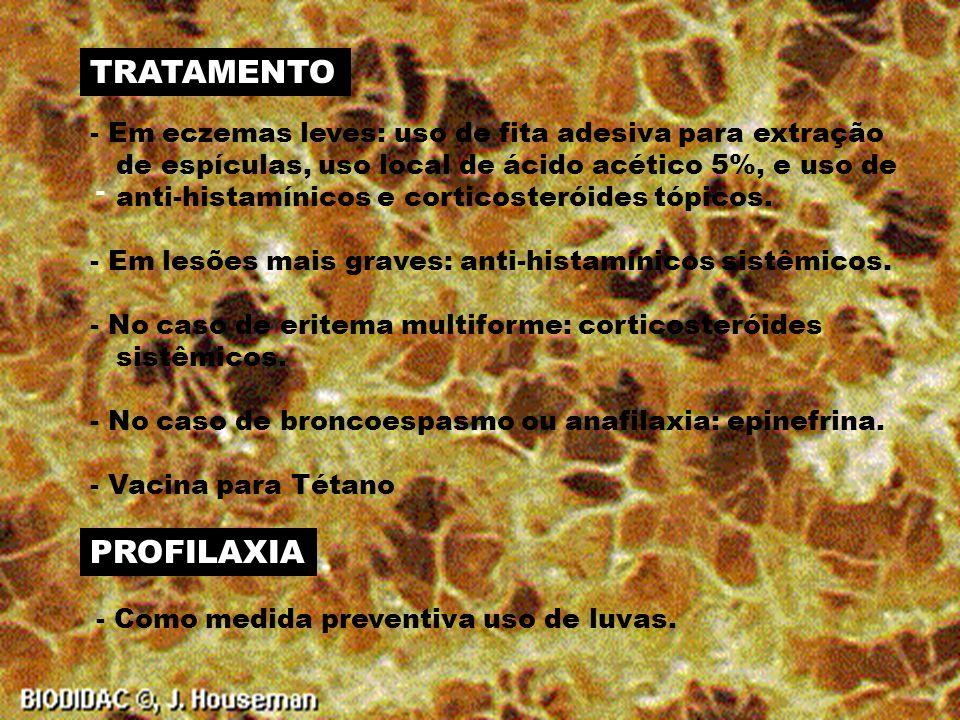 - Dermatite de aparição rápida, - Aparição de eritema, edema, vesícula, pápulas e bolhas.