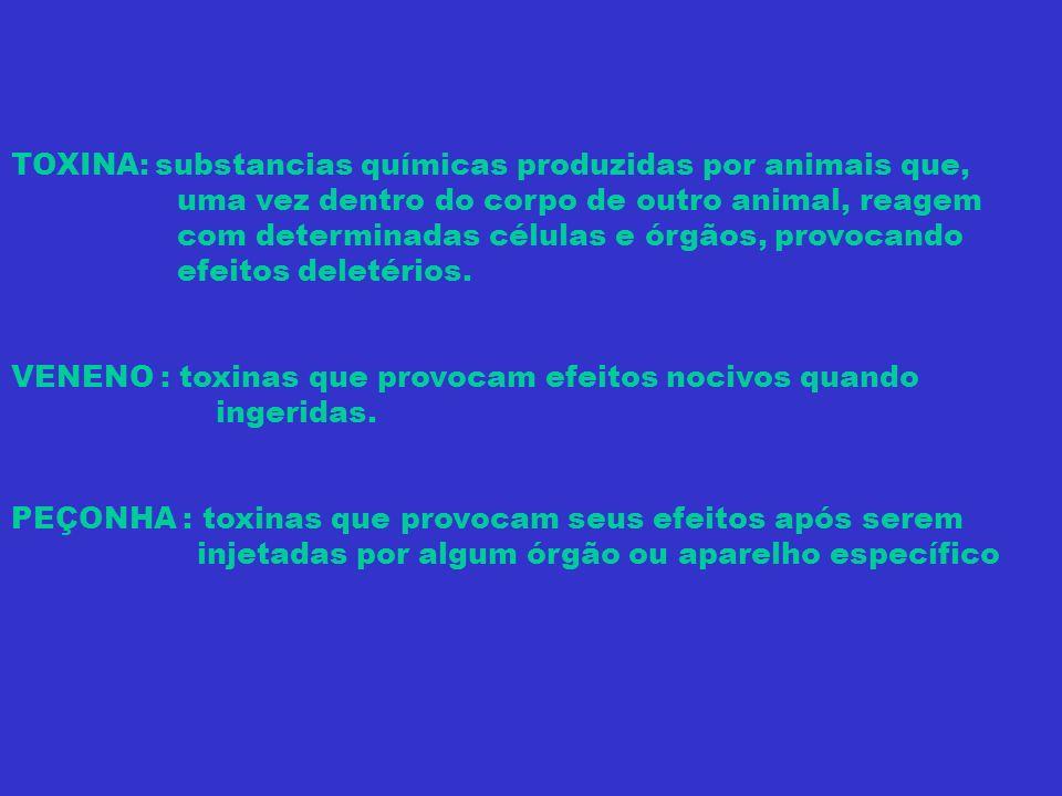 INVERTEBRADOS AQUÁTICOS