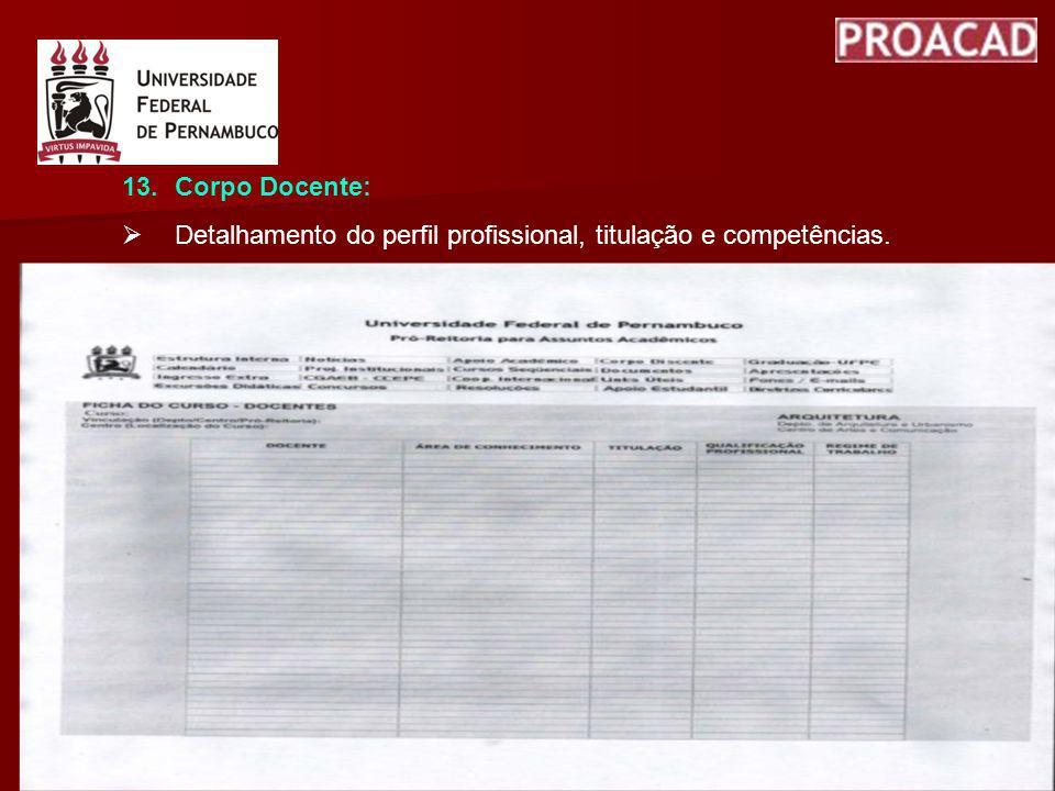 13.Corpo Docente: Detalhamento do perfil profissional, titulação e competências.