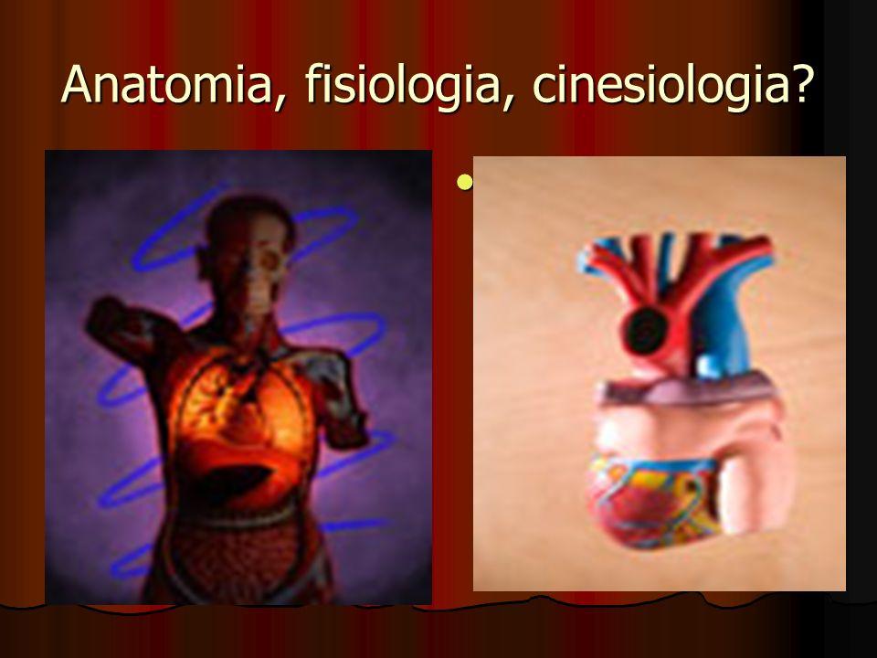 Anatomia, fisiologia, cinesiologia?