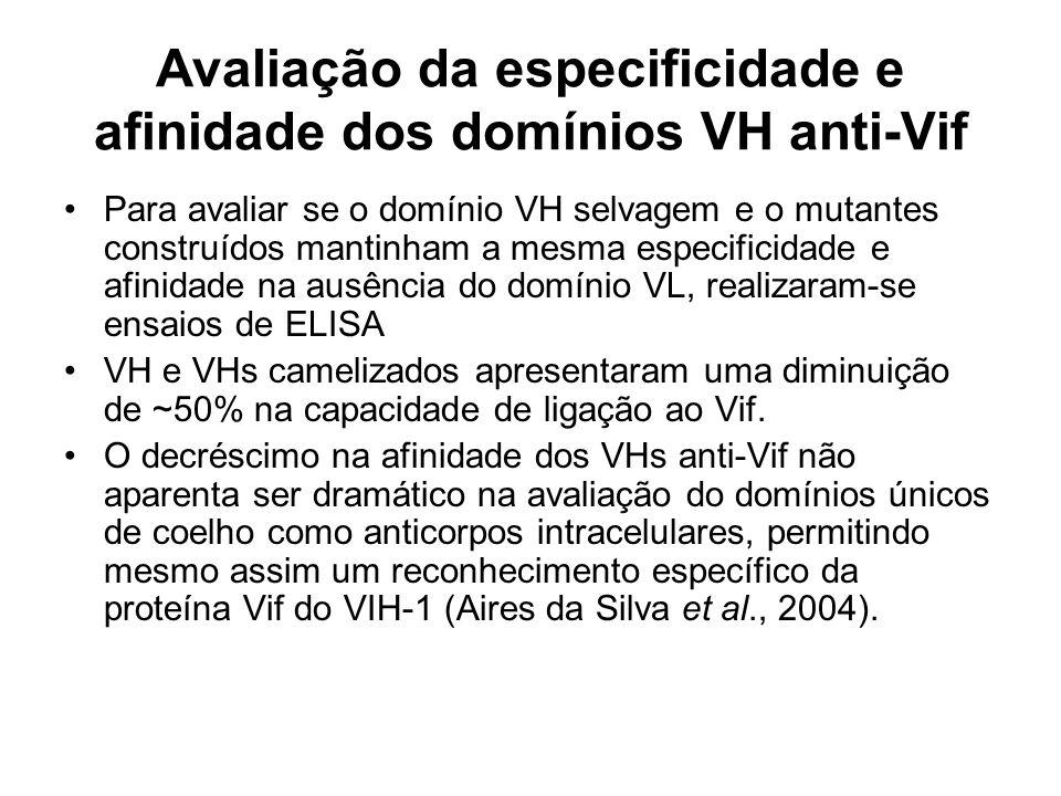 Avaliação da especificidade e afinidade dos domínios VH anti-Vif Para avaliar se o domínio VH selvagem e o mutantes construídos mantinham a mesma especificidade e afinidade na ausência do domínio VL, realizaram-se ensaios de ELISA VH e VHs camelizados apresentaram uma diminuição de ~50% na capacidade de ligação ao Vif.