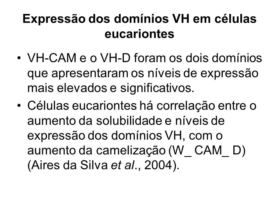 Expressão dos domínios VH em células eucariontes VH-CAM e o VH-D foram os dois domínios que apresentaram os níveis de expressão mais elevados e signif