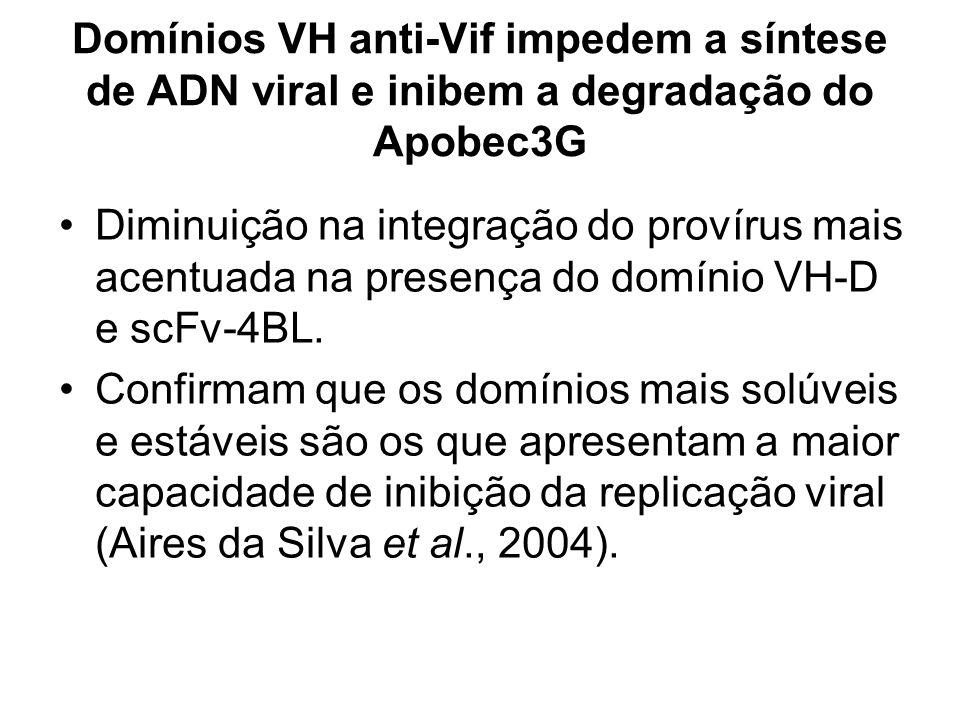 Domínios VH anti-Vif impedem a síntese de ADN viral e inibem a degradação do Apobec3G Diminuição na integração do provírus mais acentuada na presença do domínio VH-D e scFv-4BL.