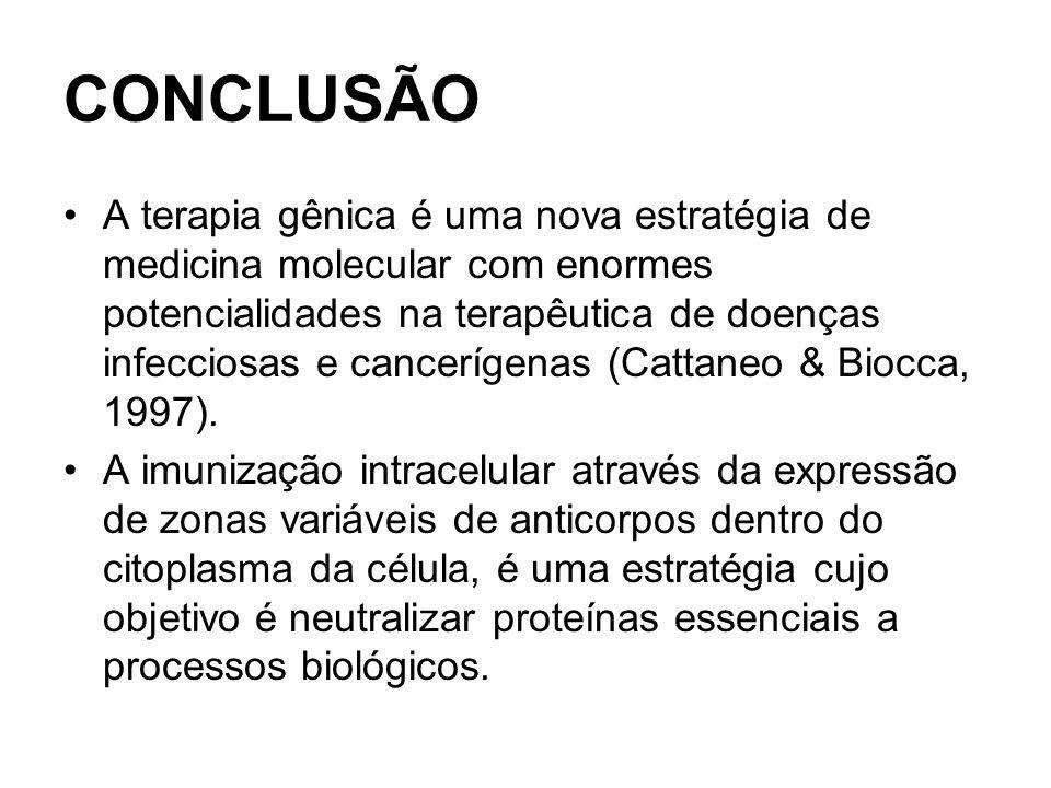 CONCLUSÃO A terapia gênica é uma nova estratégia de medicina molecular com enormes potencialidades na terapêutica de doenças infecciosas e cancerígenas (Cattaneo & Biocca, 1997).