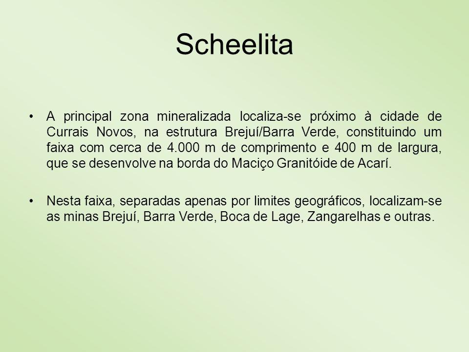 Scheelita A principal zona mineralizada localiza-se próximo à cidade de Currais Novos, na estrutura Brejuí/Barra Verde, constituindo um faixa com cerc