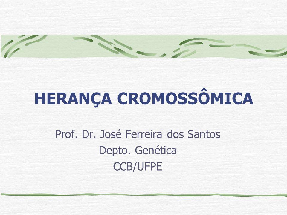 HERANÇA CROMOSSÔMICA Prof. Dr. José Ferreira dos Santos Depto. Genética CCB/UFPE