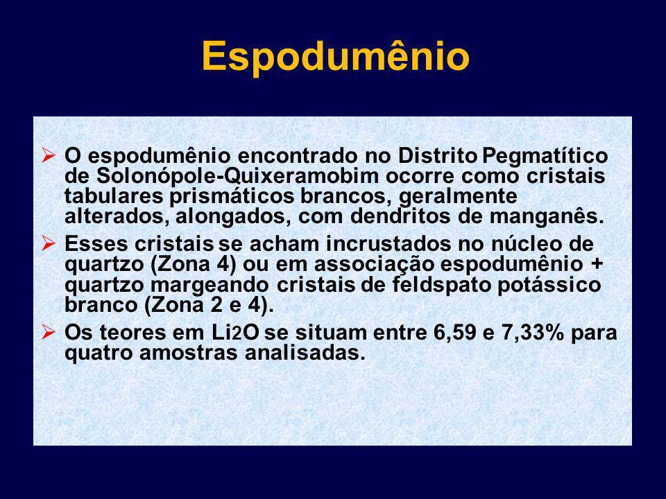 Espodumênio O espodumênio encontrado no Distrito Pegmatítico de Solonópole-Quixeramobim ocorre como cristais tabulares prismáticos brancos, geralmente