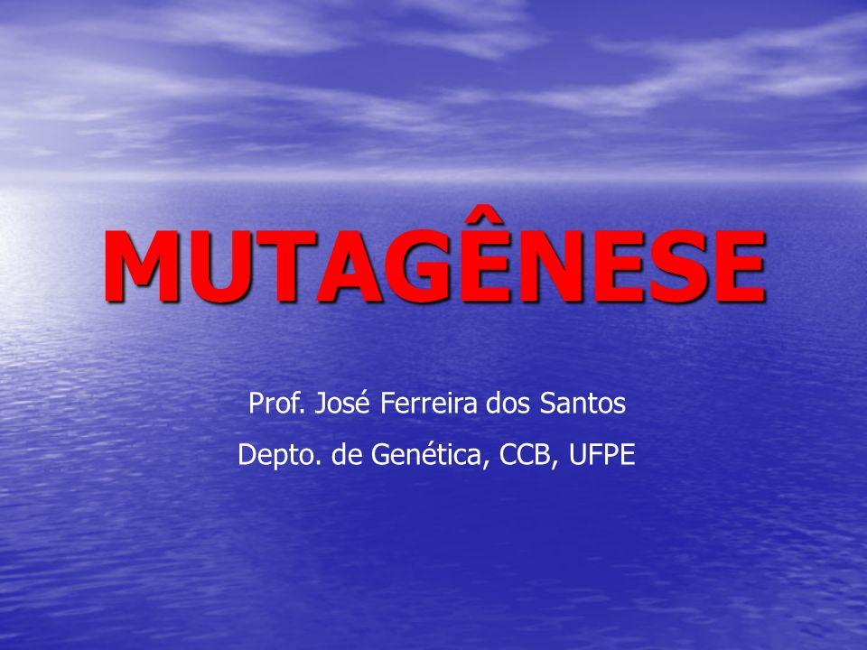 MUTAGÊNESE Prof. José Ferreira dos Santos Depto. de Genética, CCB, UFPE