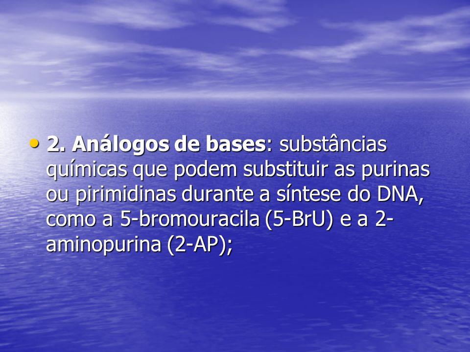 2. Análogos de bases: substâncias químicas que podem substituir as purinas ou pirimidinas durante a síntese do DNA, como a 5-bromouracila (5-BrU) e a