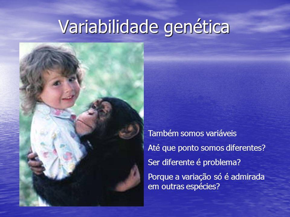 Também somos variáveis Até que ponto somos diferentes? Ser diferente é problema? Porque a variação só é admirada em outras espécies?