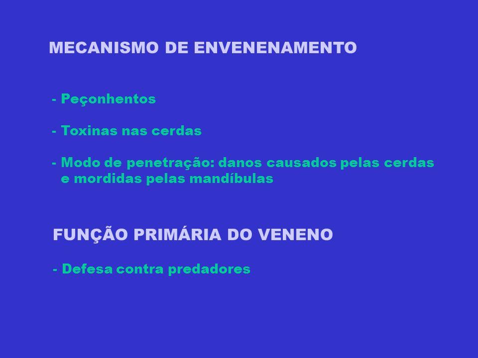 MECANISMO DE ENVENENAMENTO - Peçonhentos - Toxinas nas cerdas - Modo de penetração: danos causados pelas cerdas e mordidas pelas mandíbulas FUNÇÃO PRI