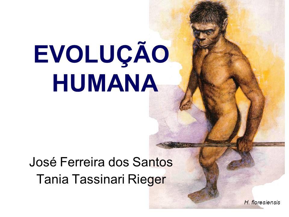 H. floresiensis José Ferreira dos Santos Tania Tassinari Rieger EVOLUÇÃO HUMANA