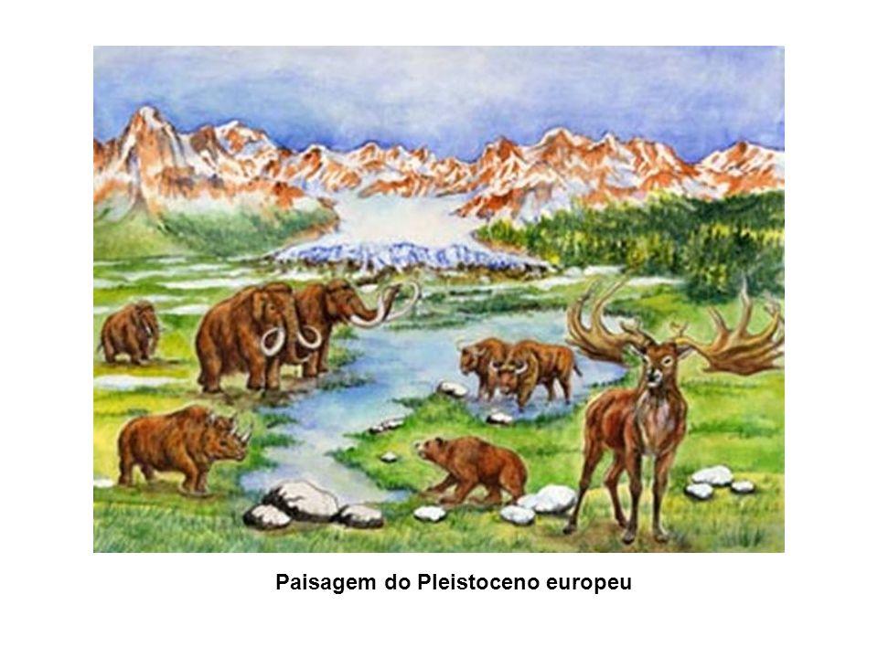Paisagem do Pleistoceno europeu