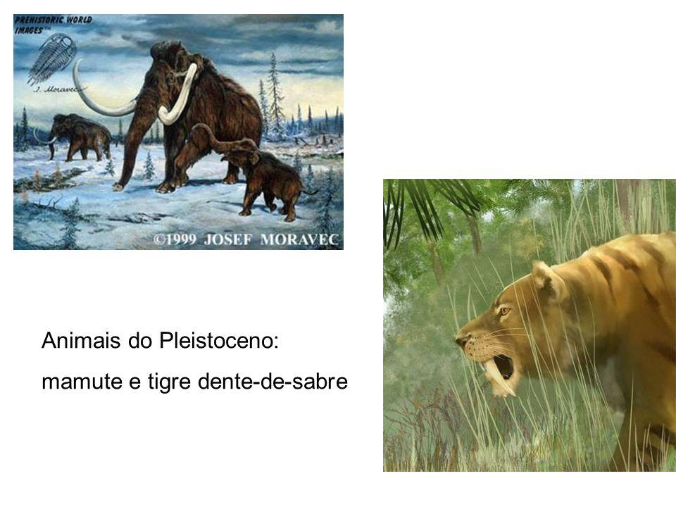 Animais do Pleistoceno: mamute e tigre dente-de-sabre