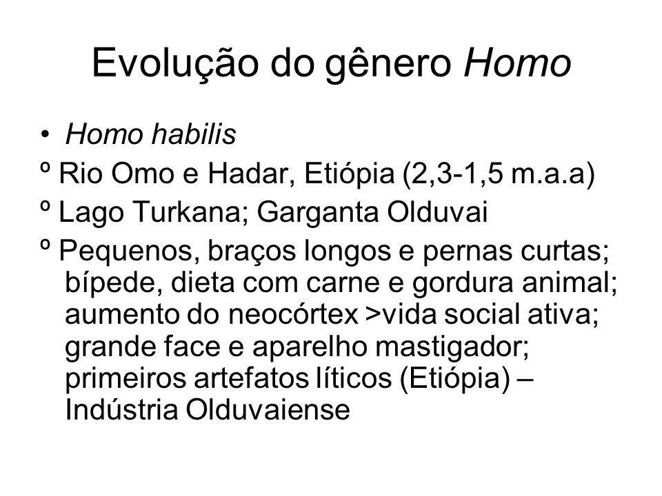 Evolução do gênero Homo Homo habilis º Rio Omo e Hadar, Etiópia (2,3-1,5 m.a.a) º Lago Turkana; Garganta Olduvai º Pequenos, braços longos e pernas cu