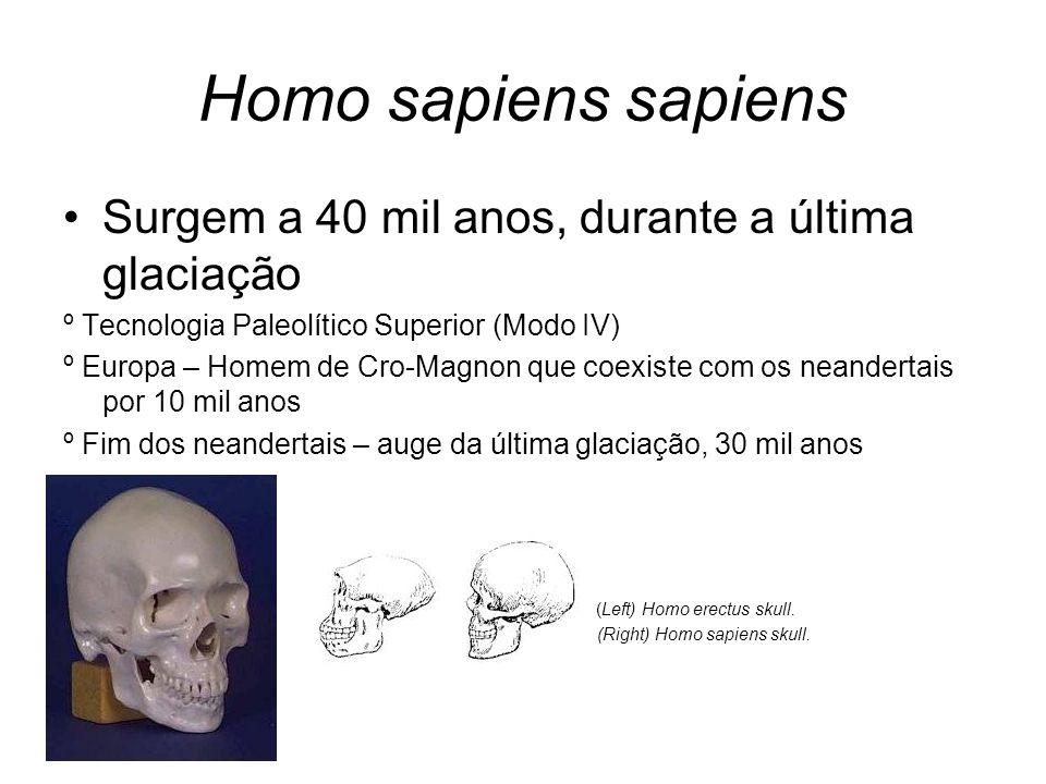 Homo sapiens sapiens Surgem a 40 mil anos, durante a última glaciação º Tecnologia Paleolítico Superior (Modo IV) º Europa – Homem de Cro-Magnon que c