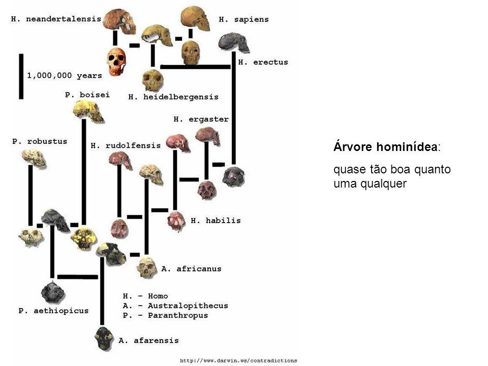 Árvore hominídea: quase tão boa quanto uma qualquer
