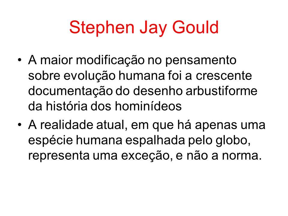Stephen Jay Gould A maior modificação no pensamento sobre evolução humana foi a crescente documentação do desenho arbustiforme da história dos hominíd
